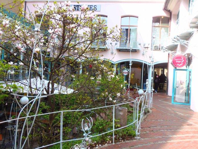 Un jardin intérieur au sein des Hackesche Höfe (Berlin).