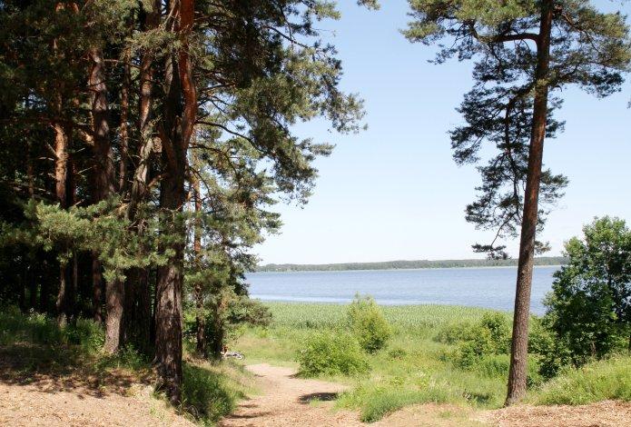 Le quartier de Mezaparks (Riga) dispose d'un grand parc à proximité. Crédit photo Rigas mezi.