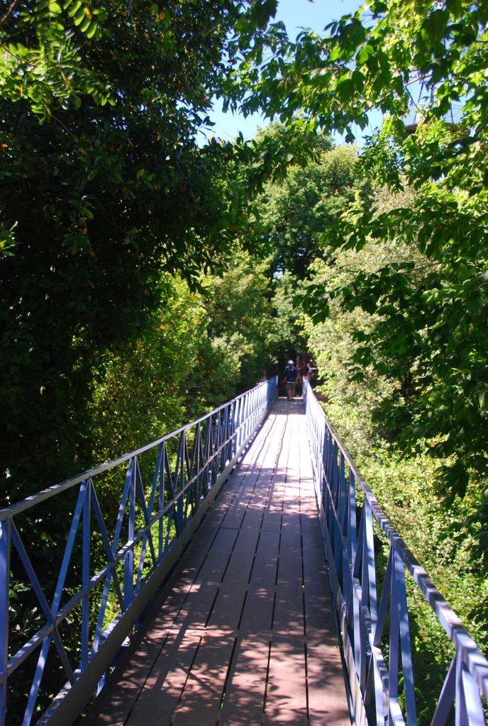 La passerelle de 32 mètres de long relie deux collines de la Ville d'Hiver d'Arcachon, enjambant l'allée Emile Péreire.