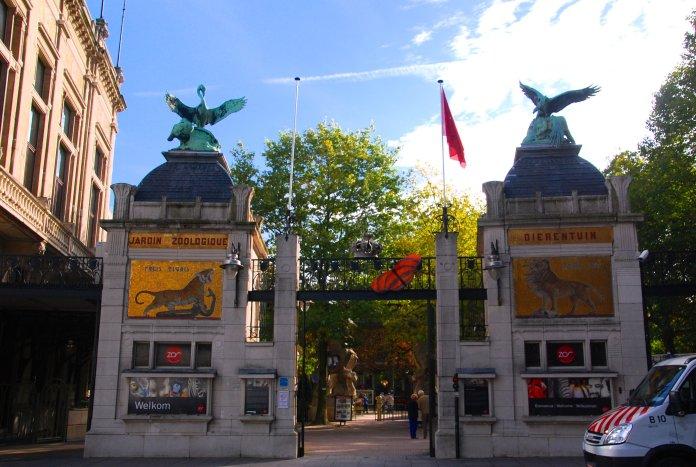 Zoo Anvers, Antwerp, Antwerpen, Belgium, Flandres