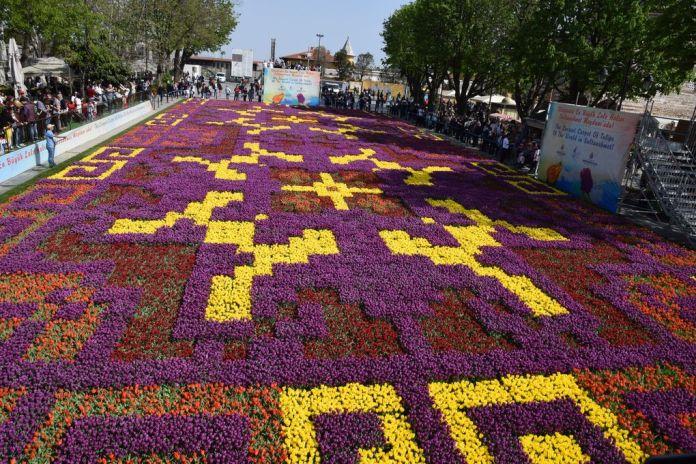tulipes sainte sophie istanbul