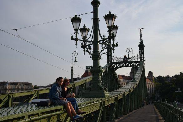 pont de la liberté observation Budapest Hongrie Hungary