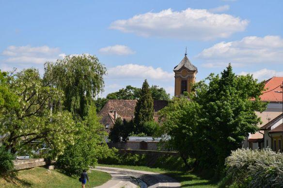 bukkos forêt Szentendre Hongrie