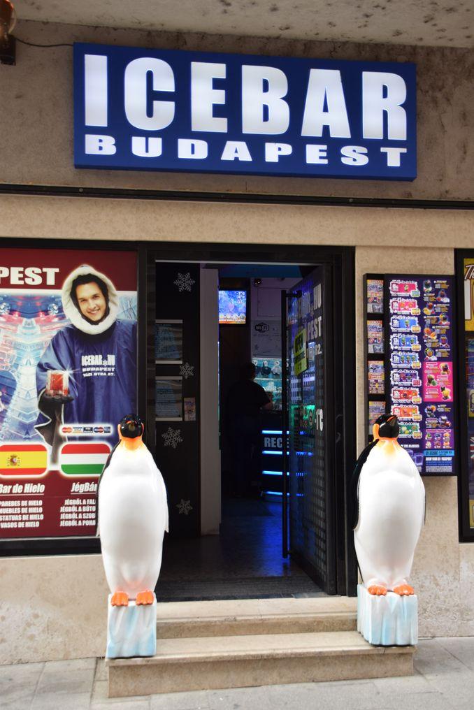 ice bar Budapest Hongrie Hungary
