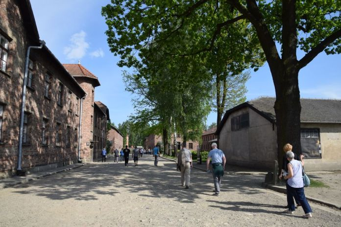 dans les allées d'Auschwitz