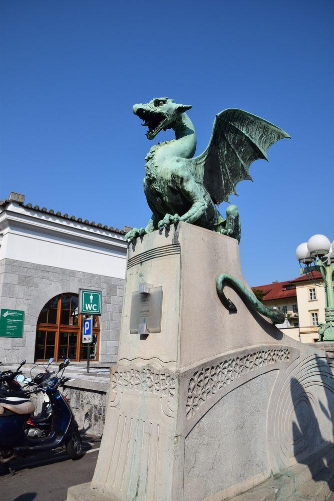 dragons de Ljubljana