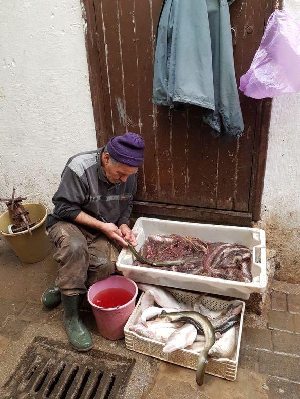 poissonnier installation précaire Médina Fès