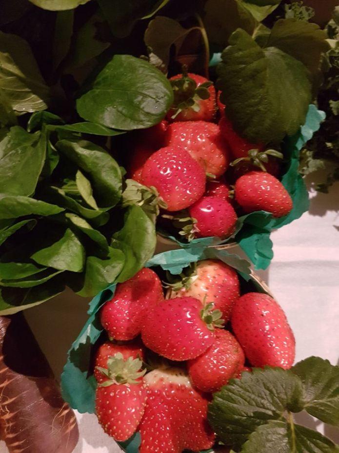 miam les fraises