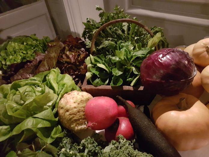 tableau coloré à base de légumes