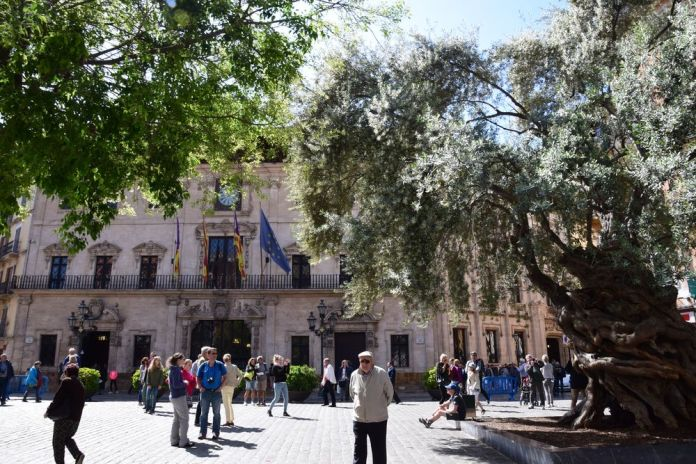 maire de Palma
