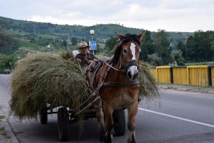 routes de Bucovine charette