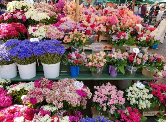 fleurs grand marché de Riga