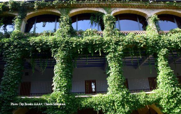 façade couverte de lierre Mon St Benet